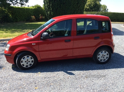 Fiat Panda ACTIVE in Armagh
