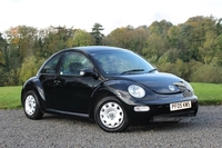 Volkswagen Beetle in Derry / Londonderry