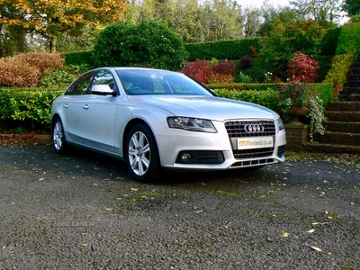Audi A4 SE TDI 6SP in Fermanagh