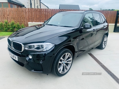 BMW X5 SDRIVE25D M SPORT AUTO in Derry / Londonderry