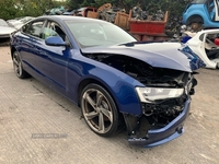 Audi A5 SE 2.0 TDI 5dr LEATHER CGL in Down