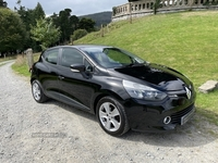 Renault Clio EXPRESSION PLUS 16V in Down